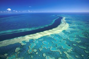 Great Barrier Reef Full Day Including Buffet Lunch